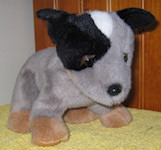 Blue Heeler soft toy