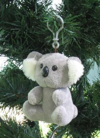 Koala tail - photo#17