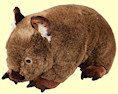Stuffed wombat